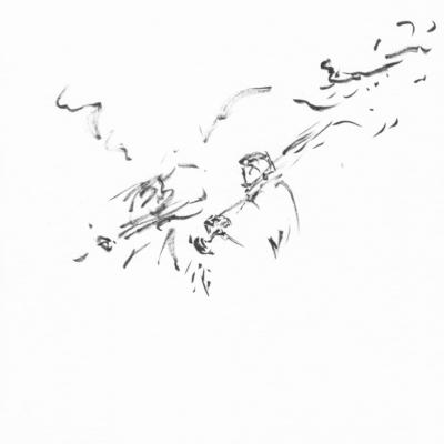 Lukas Brilliert Bei Mendelssohn Wels 2017