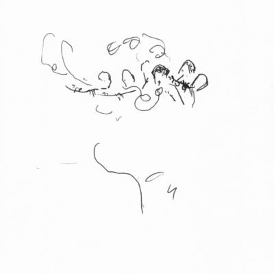 Spilling The (harmonic) Beans (05:00 – )